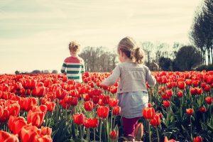 פארקים לילדים בהולנד אמסטרדם