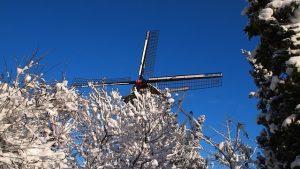 טיול בהולנד בשלג