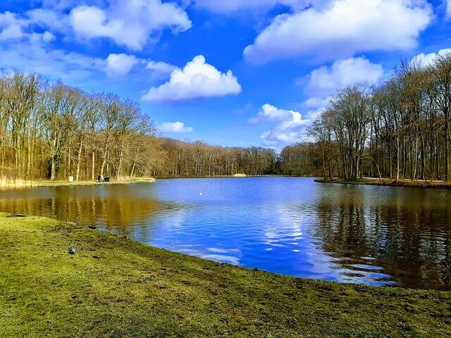 פארק בדן האג