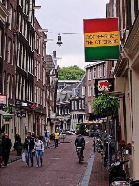 קופישופס בהולנד