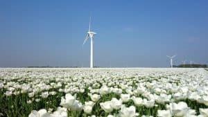 הולנד באפריל