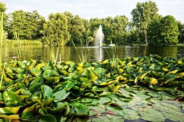פארק אמסטל - Amstelpark