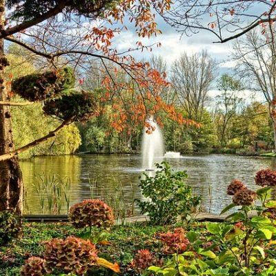 פארק בהולנד